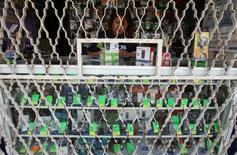 Una empleada en una tienda de teléfonos móviles en Ciudad de México, oct 20 2009. El regulador de telecomunicaciones de México dijo el viernes que inició un procedimiento para determinar la probable existencia de operadores con poder sustancial en los mercados de redes de telecomunicaciones que presten servicios de voz, datos y/o video. REUTERS/Daniel Aguilar