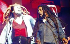 Julian Marley, son of the late reggae icon Bob Marley, performs at a concert celebrating his father's 69th birthday at the National Stadium in Kingston, February 7, 2014.  REUTERS/Gilbert Bellamy