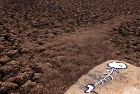 Brazil's historic drought