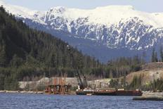 Cranes work in the water at the Kitimat LNG site near Kitimat, in northwestern British Columbia on April 13, 2014.  REUTERS/Julie Gordon