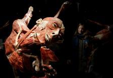 """Una persona observa uno de los cuerpos embalsamados de la exposición """"Body Worlds"""" en Berlín, 17 febrero, 2015.  Un museo permanente que muestra cadáveres conservados sin la piel para revelar la complejidad del cuerpo humano abre el miércoles en Berlín. REUTERS/Stefanie Loos"""