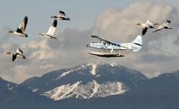 Snow geese and a float plane pass Cypress Mountain prior to the Vancouver 2010 Winter Olympic Games in a February 9, 2010 file photo.  REUTERS/Chris Helgren/files