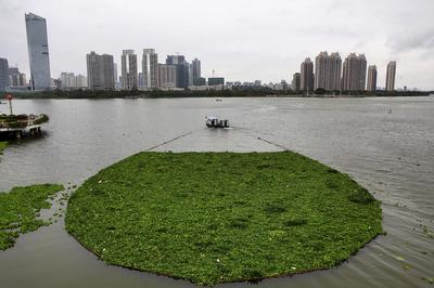 Polluted waters of China