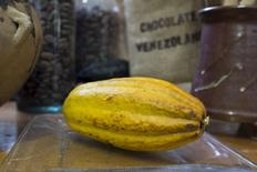 Un fruto de cacao en un local de Caracas, 10 abril, 2015. El exquisito cacao de Venezuela, codiciado hace siglos por los colonizadores y piratas europeos y ahora favorito entre los fabricantes más célebres del mundo, no podrá nutrir en el corto plazo las barras de chocolate que se producen fuera del país. REUTERS/Marco Bello