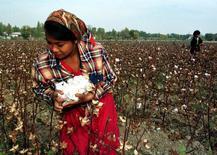 Узбекская девочка собирает хлопок в поле в 50 километрах к югу от Ташкента. 24 октября 1997 года. Правительство Узбекистана заставило более миллиона человек работать на хлопковых полях в 2014 году, в то время как чиновники прикарманивали прибыли в беспрецедентных масштабах, сообщила правозащитная организация. REUTERS/Shamil Zhumatov