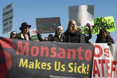 Activistas protestan contra la producción de herbicidas y productos alimenticios Genéticamente Modificados (GMO) a las afueras de la sede de Monsanto en Greve Coeur durante su asamblea anual de accionistas, 30 de enero de 2015. Argentina dijo el martes que la mayoría de los agricultores locales no pagarán regalías por granos producidos con semillas transgénicas obtenidas de su propia cosecha, lo que pondrá fin a una práctica que impulsó el gigante Monsanto y que provocó una disputa por los derechos de propiedad en el sector. REUTERS/Kate Munsch