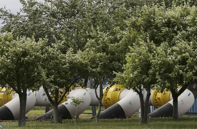 Gas pipes are pictured at a gas-measuring station near Uzhhorod, Ukraine, in this May 27, 2015 file photo.  REUTERS/Gleb Garanich/Files