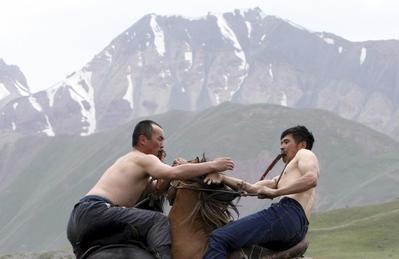 Horses on high