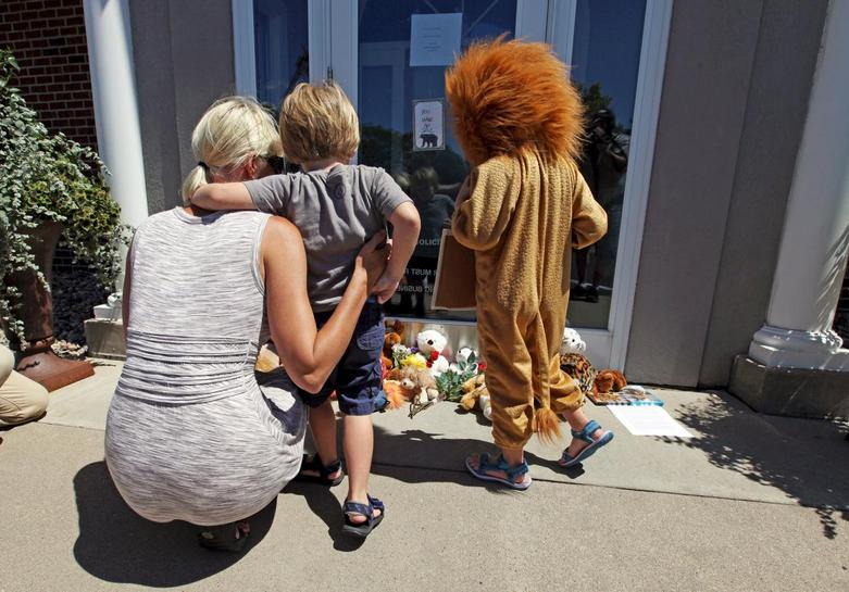Killing of Cecil the lion triggers probe by U S  agency: source