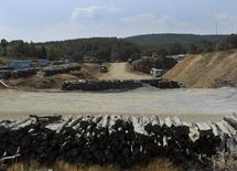 Logs are piled up in the forest area where Hellas Gold will construct an open pit to extract gold in Skouries, in the Halkidiki region, northern Greece August 16, 2013. REUTERS/Lefteris Papadimas