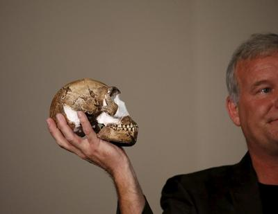 New human ancestor found