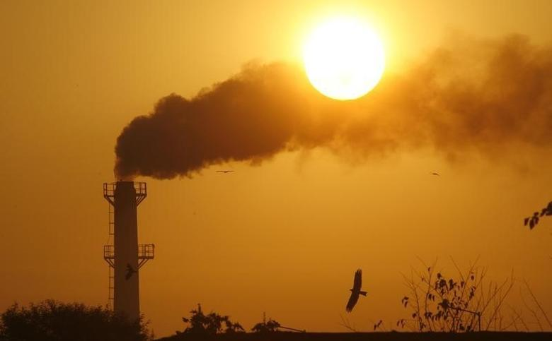 Smoke rises from a chimney of a garbage processing plant on the outskirts of Chandigarh December 3, 2011. REUTERS/Ajay Verma/Files