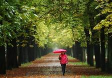 A woman enjoys a walk along an avenue of trees at Prater recreation area on a rainy autumn day in Vienna.   REUTERS/Heinz-Peter Bader