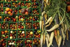 Vegetables are seen at a farmers market in Los Angeles, California in a May 10, 2015 file photo. Canadian farmers are cashing in on the highest vegetable prices in years, helped by the country's weak currency and soaring costs of U.S. imports that have made them unexpected winners in a bearish commodity world.   REUTERS/Lucy Nicholson/Files