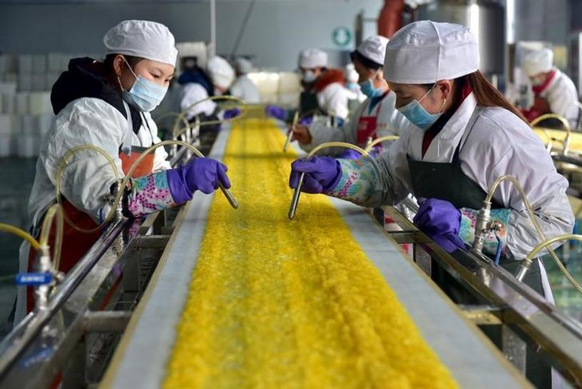 Chinese firms hiring less, capex hits five-year low: Beige Book private survey