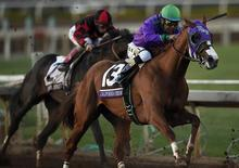 November 1, 2014; Santa Anita , CA, USA; Victor Espinoza aboard California Chrome sprints to the finish in race twelve during the 2014 Breeders Cup Championships at Santa Anita Park. California Chrome would finish second Mandatory Credit: Kelvin Kuo-USA TODAY Sports