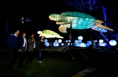 A family walks past giant lanterns in the shape of sea turtles during a preview of Taronga Zoo's inaugural contribution to the Vivid Sydney light festival. REUTERS/Jason Reed