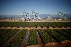 Станки-качалки в Окснарде, Калифорния 24 февраля 2015 года. Цены на нефть растут в четверг, поддерживаемые данными о снижении запасов в США, а также слабостью доллара, однако избыток нефтепродуктов и беспокойство об экономическом росте продолжают держать рынки под давлением.  REUTERS/Lucy Nicholson