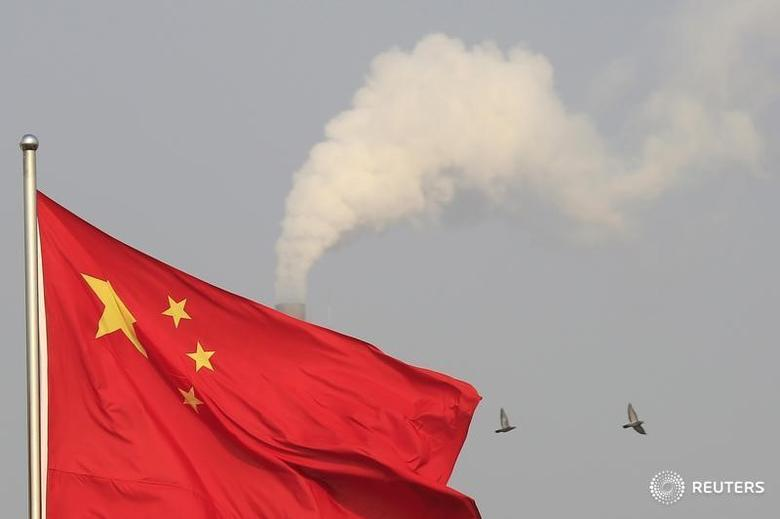 Birds fly past the chimney of a thermal power plant as China's national flag flutters in a suburb in Shanghai January 9, 2015.  REUTERS/Aly Song