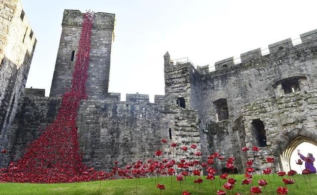 10月17日、英ウェールズ北西部にあるカーナーヴォン城で、塔の先から地上の芝生までがセラミックで作られた数千本のポピーの花々に覆われるイベントが開催されている。(2016年 ロイター/Rebecca Naden)