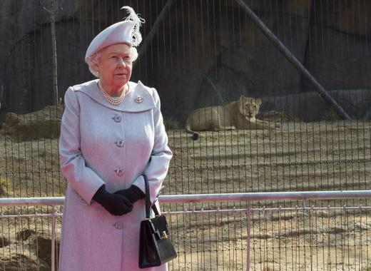 Britain's Queen Elizabeth visits the new Asiatic lion enclosure at London Zoo, March 17, 2016. REUTERS/Arthur Edwards/Pool
