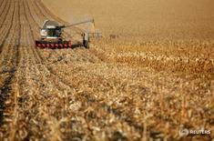 Комбайн убирает пшеницу на поле в селе Александровское Ставропольского края 4 октября 2016 года. Россия начала экспорт кукурузы во Вьетнам, сообщил Россельхознадзор. REUTERS/Eduard Korniyenko