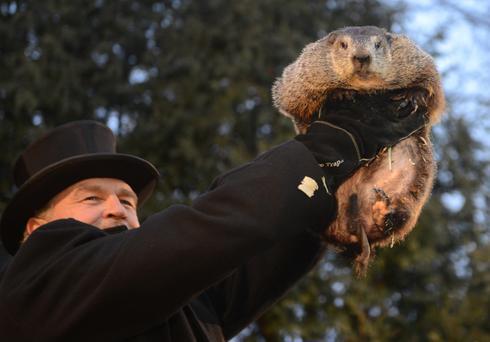 Groundhog Day in Punxsutawney