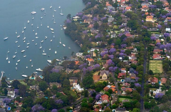 Boats are moored on Sydney Harbour near homes in the Sydney suburb of Hunters Hill, Australia, November 8, 2016.      REUTERS/David Gray/File Photo