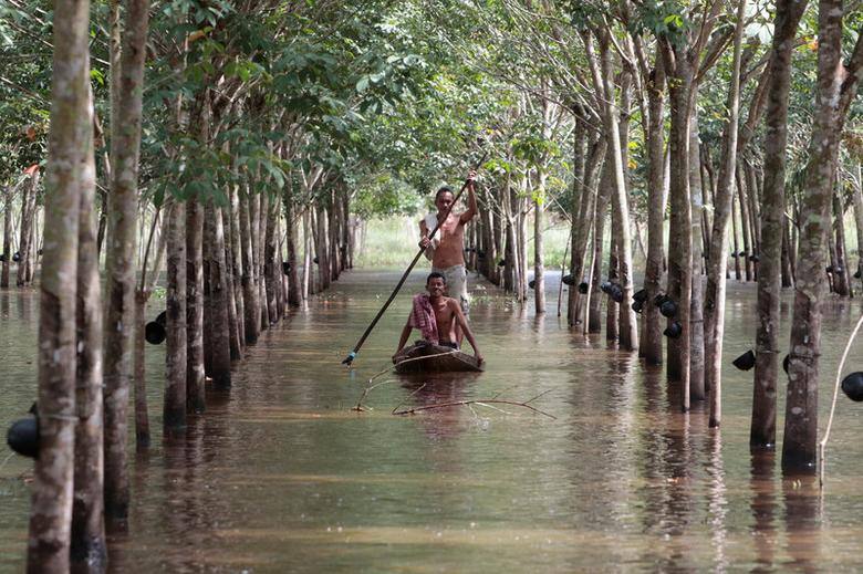 Phon Tongmak, a rubber tree farmer (back), rows a boat in floodwaters in his rubber plantation with his friend at Cha-uat district in Nakhon Si Thammarat Province, southern Thailand, January 18, 2017. Picture taken January 18, 2017. REUTERS/Surapan Boonthanom