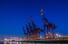 La economía alemana creció un 0,4 por ciento en el último trimestre de 2016, dijo el martes la Oficina Federal de Estadísticas, al compensar el aumento del gasto estatal y el mayor consumo privado y la construcción la menor contribución del comercio exterior. En la foto, una fila de grúas en el puerto de Hamburgo el 18 de septiembre de 2014. REUTERS/Fabian Bimmer