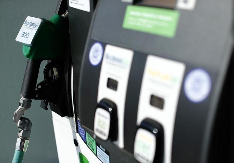 FILE PHOTO: A pump at an alternative fueling station that provides fuel other than gasoline is shown in San Diego, California January 8, 2015. REUTERS/Mike Blake