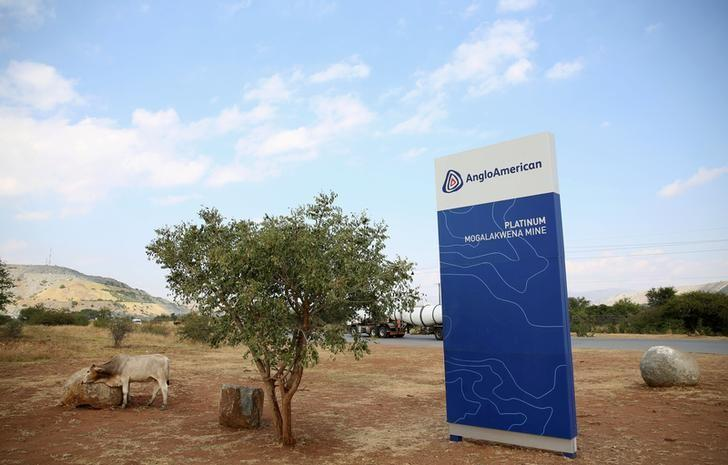 FILE PHOTO: A cow is seen near the Anglo American sign board outside the Mogalakwena platinum mine in Mokopane, South Africa, May 18, 2016. REUTERS/Siphiwe Sibeko/File Photo