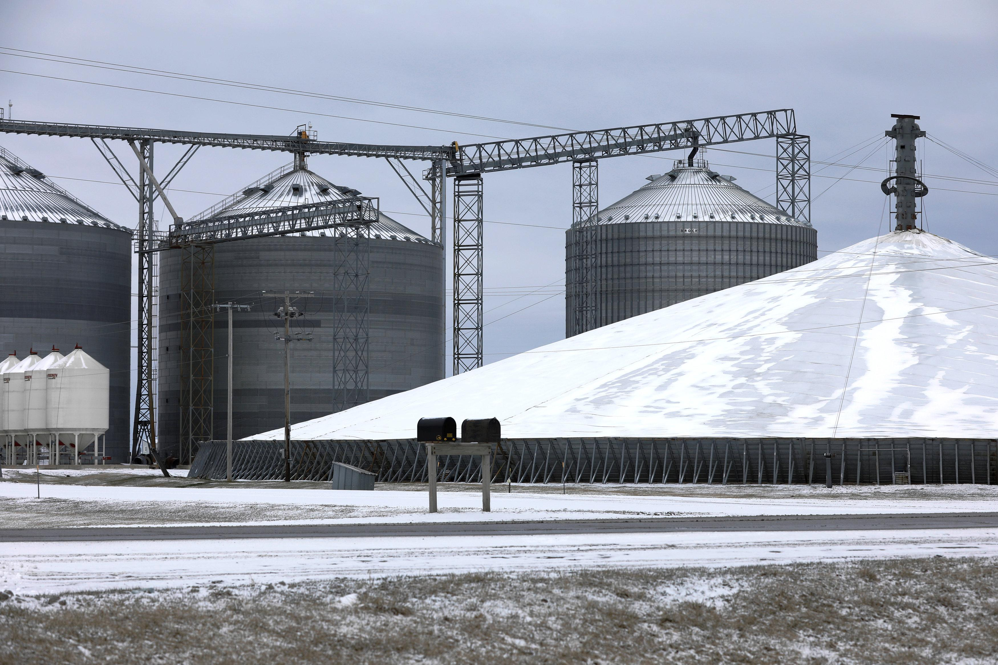 Grains piled on runways, parking lots, fields amid global glut - Reuters