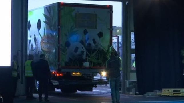 4月12日、オランダ・アムステルダムのスキポール空港に中国からジャイアントパンダ2頭が到着した。子供たちが笹の葉を振って歓迎する中、パンダはこれから中部レーネンにあるアウエハンツ動物園に向かう。写真はロイタービデオの映像から(2017年 ロイター)
