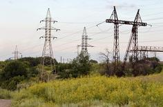 Electric pylons are seen in a field in the town of Kostiantynivka, some 700 km (435 miles) southeast of Kiev, June 24, 2012.  REUTERS/Vasily Fedosenko (UKRAINE - Tags: ENERGY SOCIETY)