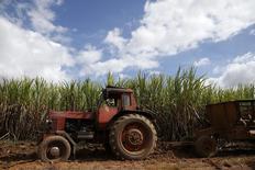 Um trator ao lado de uma plantação de cana de açúcar em Flórida, em Cuba. 01/12/2016     REUTERS/Carlos Garcia Rawlins