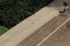 Trator em plantação de trigo na cidade de Santarém, no Pará 20/04/2013 REUTERS/Nacho Doce/File Photo