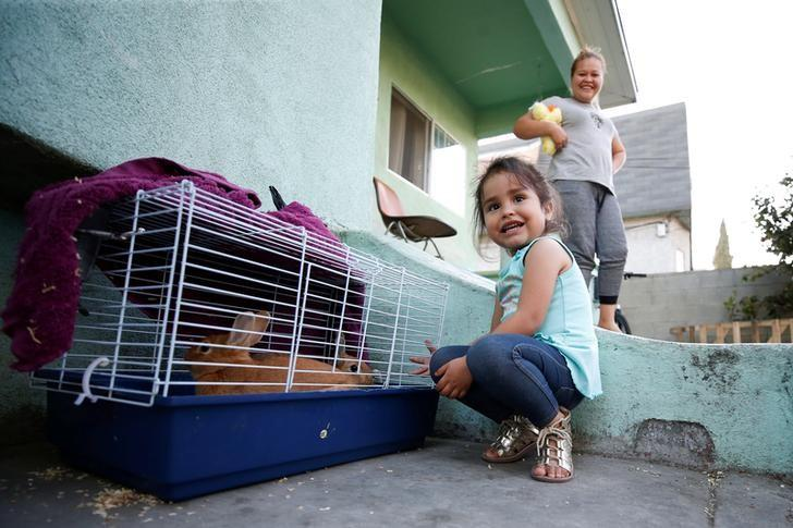 Three-year old Kendra Nicole Rojas, plays with pet bunnies at her uncle's home where she and her mother Karla Rojas, 26, (R) used to live but moved out after lead paint was found in the home in the Historic South Central neighborhood of Los Angeles, California, United States April 5, 2017. Picture taken April 5, 2017.