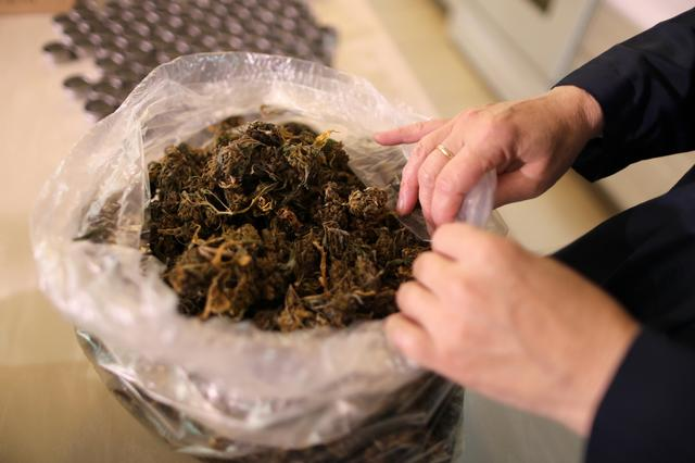 California ''weed nun'' Christine Meeusen, 57, who goes by the name Sister Kate, opens a bag of hemp in the kitchen at Sisters of the Valley near Merced, California, U.S., April 18, 2017.  REUTERS/Lucy Nicholson