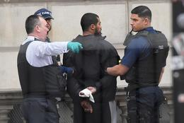 Man arrested at Whitehall