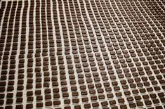 Eurazeo a annoncé lundi vouloir faire du nouvel ensemble CPK, regroupant les marques de confiserie rachetées il y a un an à Mondelez International, un champion français de la confiserie et du chocolat. /Photo d'archives/REUTERS/Gleb Garanich
