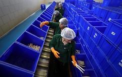 El número de empleos vacantes en Alemania alcanzó un máximo histórico en los tres primeros meses de 2017, según datos publicados el martes, subiendo a más de un millón mientras la mayor economía de Europa se expande más rápido que su fuerza laboral. En la imagen, varias mujeres clasifican espárragos en la planta de Peter Lipp, cerca de Weiterstadt, Alemania, el 28 de marzo de 2017. REUTERS/Kai Pfaffenbach