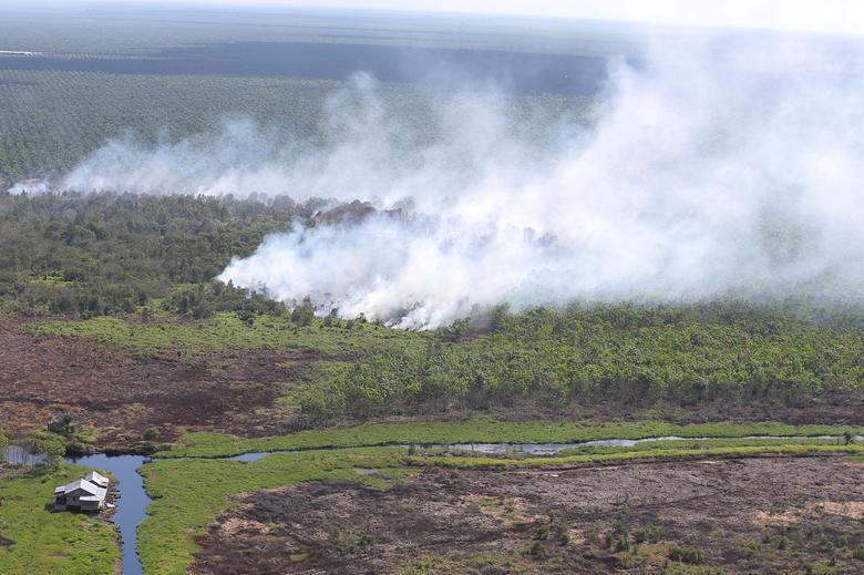 A view of a fire burning in Musi Banyuasin Regency, South Sumatra, Indonesia  August 8, 2016 in this photo taken by Antara Foto. Antara Foto/Nova Wahyudi/File Photo  via REUTERS
