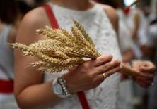 La sequía va a mermar la cosecha de cereales de invierno en España, advirtió el viernes la asociación de agricultores ASAJA, que augura un descenso de un 50 por ciento hasta unos 9,5 millones de toneladas.  En la imagen, una mujer con trigo en la mano en Pamplona, durante las fiestas de San Fermín del 7 de julio de 2016. REUTERS/Vincent West