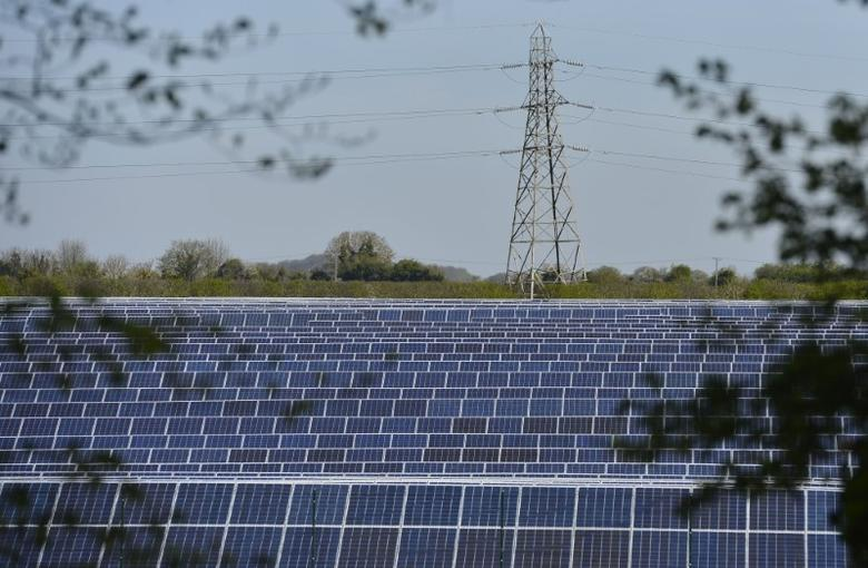 FILE PHOTO - Solar panels are seen in fields near Andover in southern England May 3, 2013. REUTERS/Toby Melville