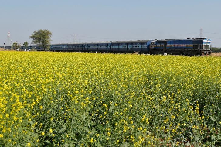 A passenger train moves past a mustard field on the outskirts of Ajmer, India December 28, 2016. REUTERS/Himanshu Sharma