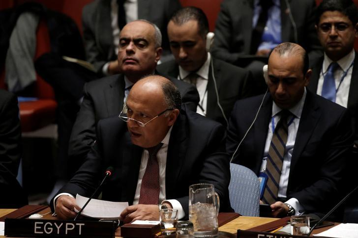 Egyptian Foreign Minister Sameh Shoukry addresses a U.N. Security Council meeting on South Sudan at U.N. headquarters in New York City, New York, U.S., March 23, 2017. REUTERS/Mike Segar/Files