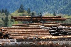 Piles of logs are moved in Squamish, British Columbia, Canada April 25, 2017. REUTERS/Ben Nelms