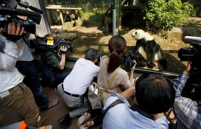6月12日、東京都内にある上野動物園は、ジャイアントパンダのメス「シンシン」が同日に出産したと発表した。東京株式市場では、同施設の近辺に店を構える銘柄に対し集客の伸びを期待した買い注文が入っている。写真はシンシンを取材する報道陣。先月19日、上野動物園で撮影(2017年 ロイター/Issei Kato)