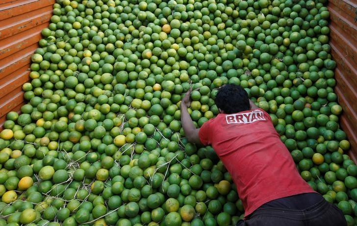 A labourer unloads sweet limes from a truck at a wholesale fruit and vegetable market in Mumbai, India, February 13, 2017 REUTERS/Shailesh Andrade/Files